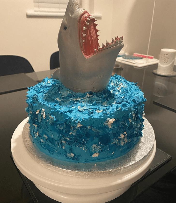 Nice Shark Cake