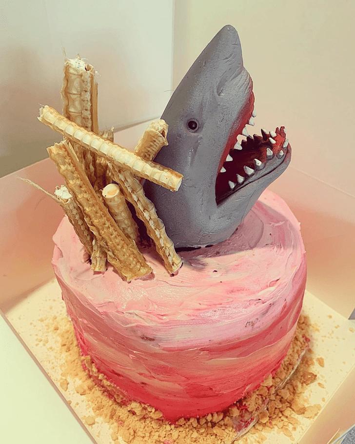 Wonderful Shark Cake Design