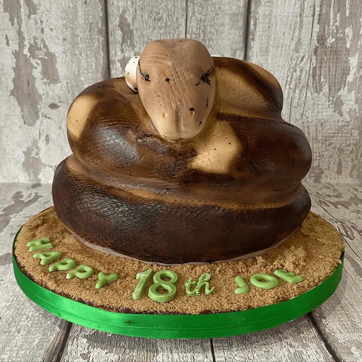 Enticing Snake Cake