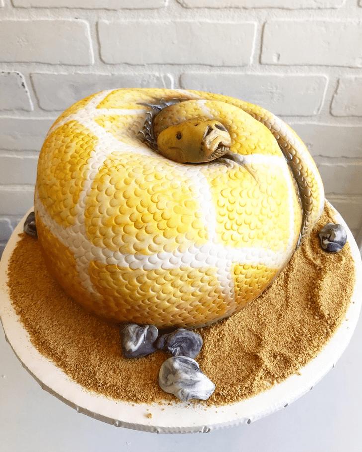 Mesmeric Snake Cake