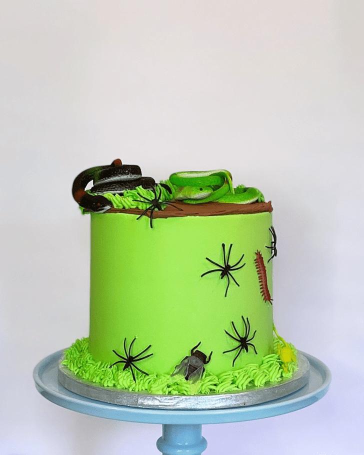 Splendid Snake Cake