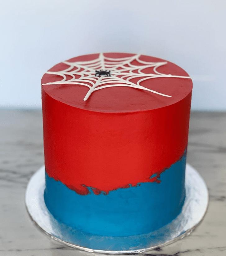 Bewitching Spider Cake