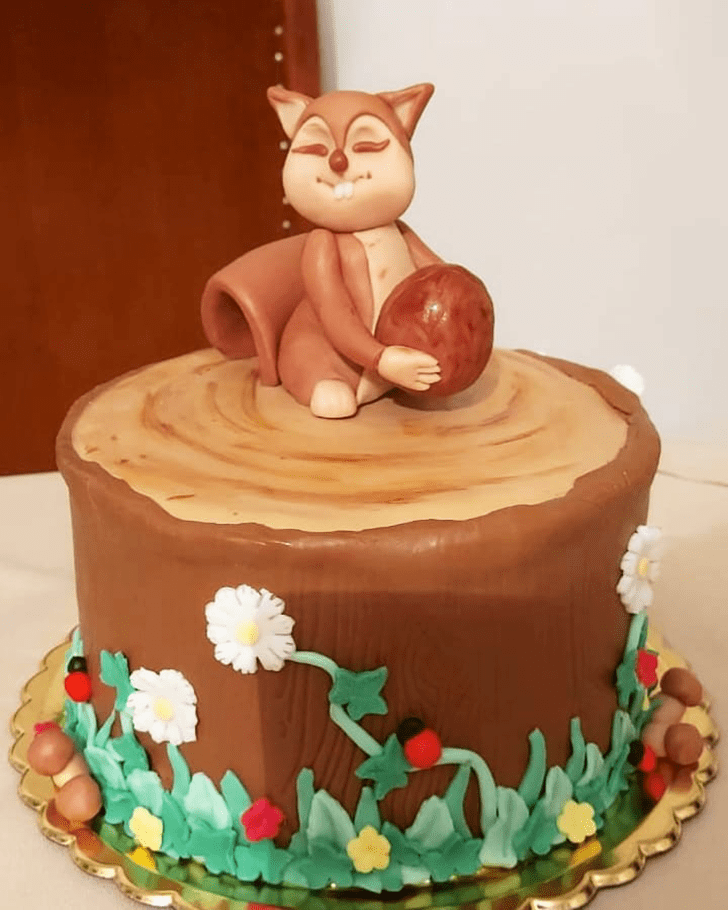 Comely Squirrel Cake