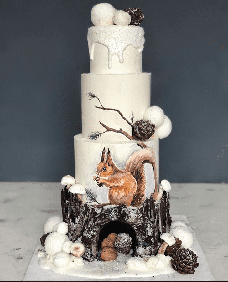 Excellent Squirrel Cake