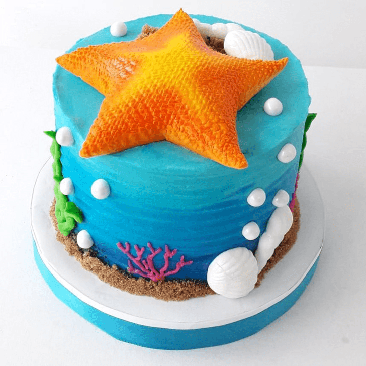 Comely Starfish Cake