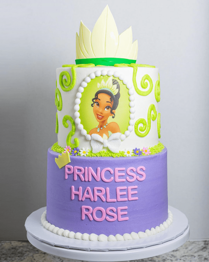 Fair The Princess and the Frog Cake