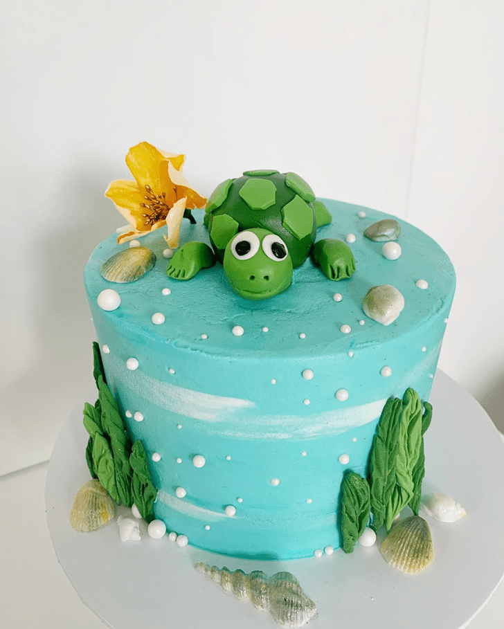 Angelic Turtle Cake