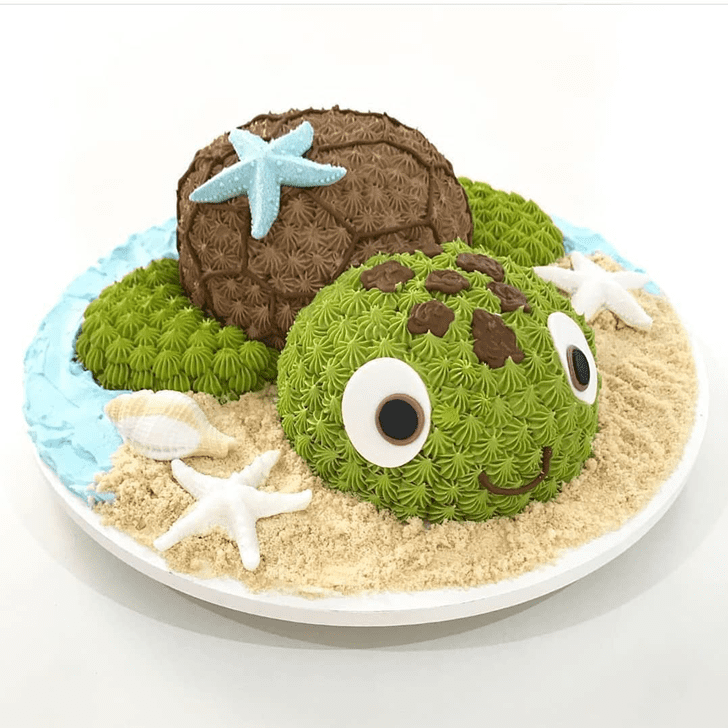 Bewitching Turtle Cake