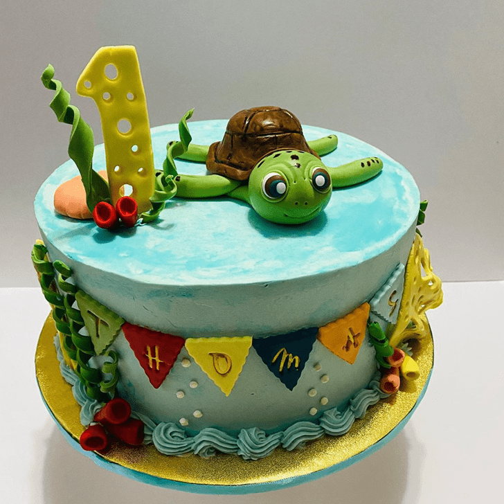 Comely Turtle Cake
