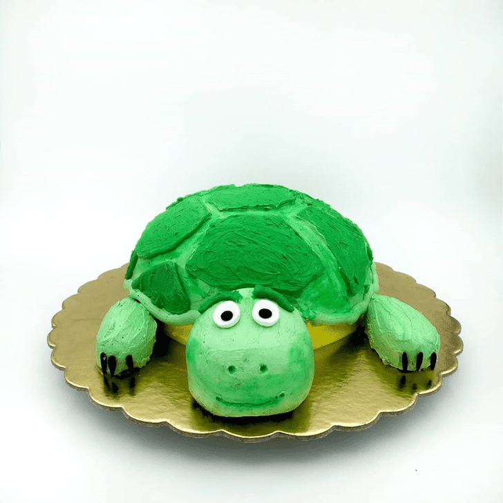 Dazzling Turtle Cake