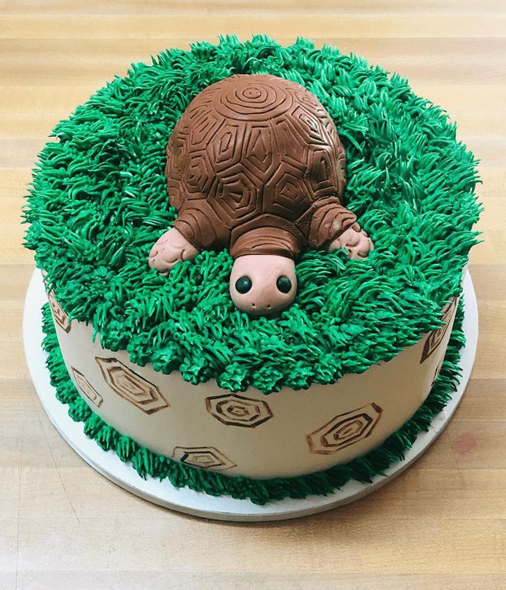 Delicate Turtle Cake