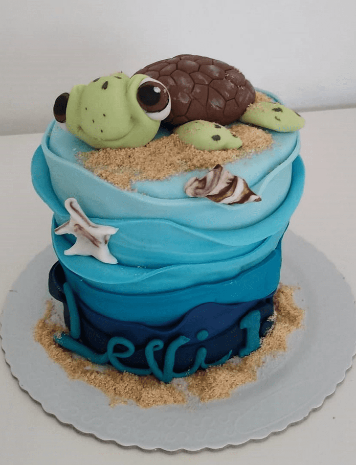 Magnetic Turtle Cake