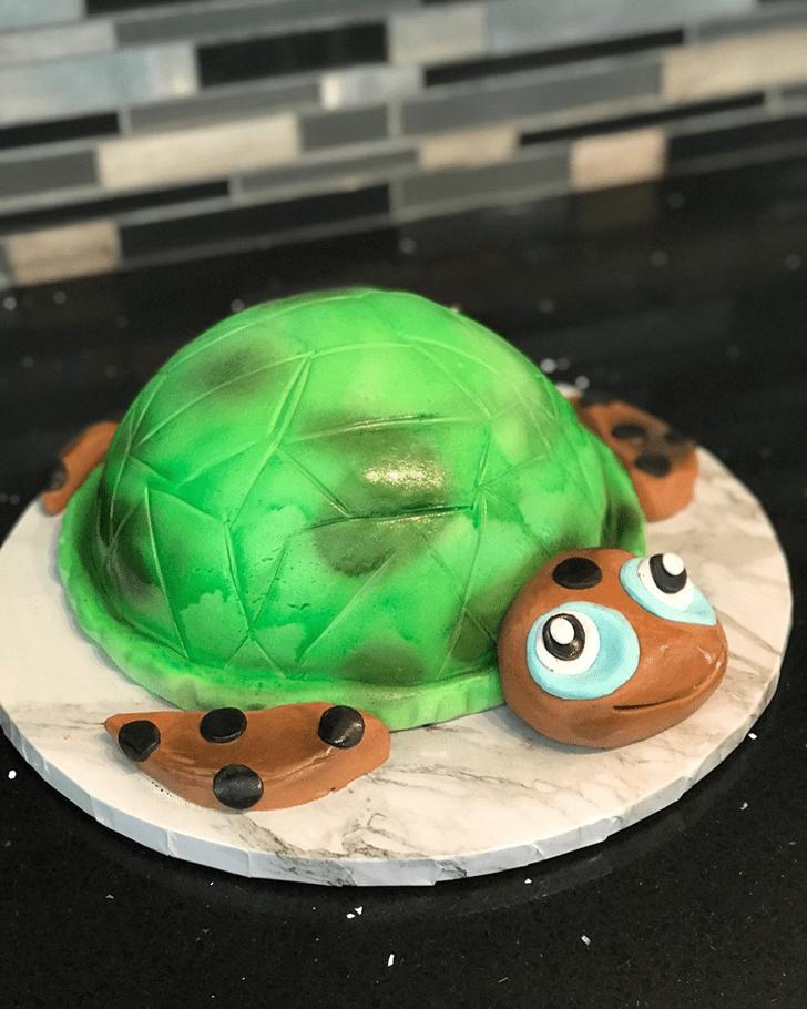 Mesmeric Turtle Cake