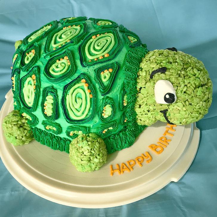Pretty Turtle Cake