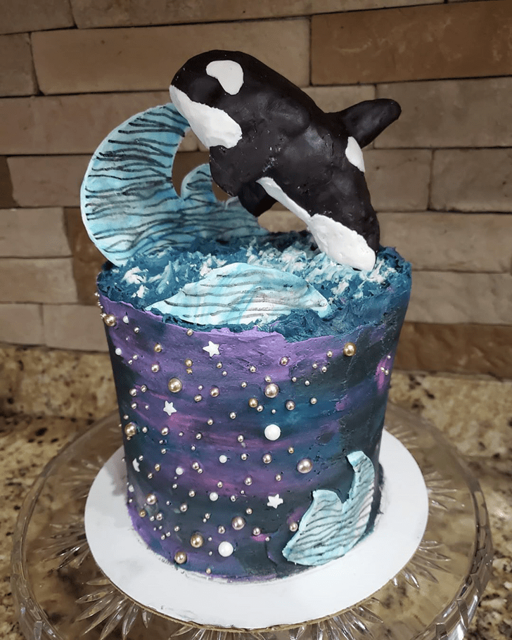 Good Looking Whale Cake