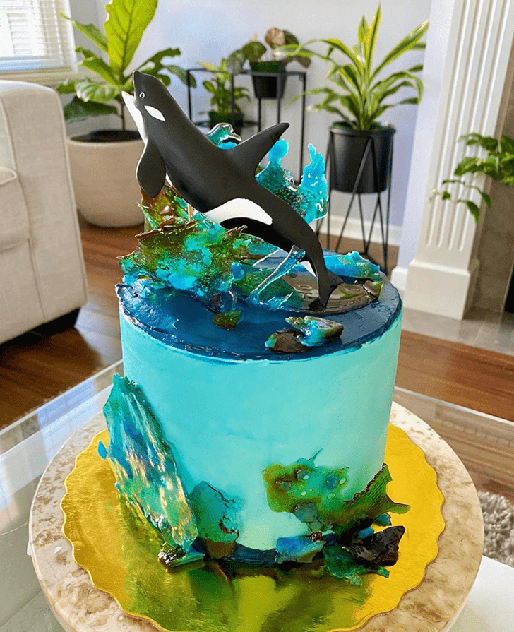Handsome Whale Cake