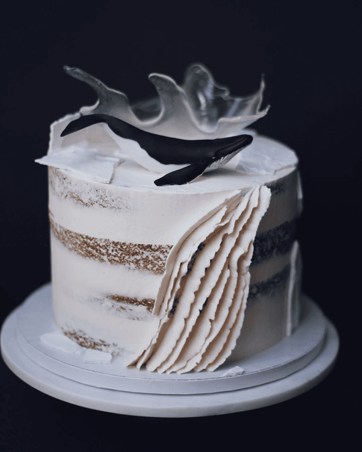 Shapely Whale Cake