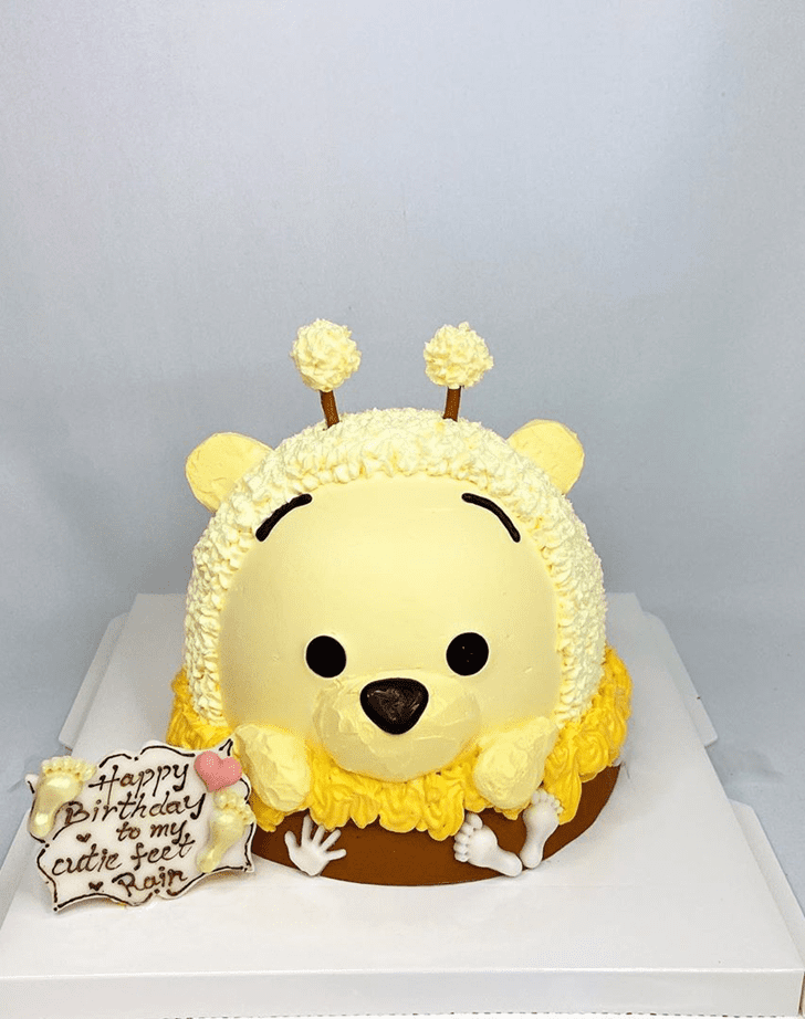 Magnetic Winnie the Pooh Cake