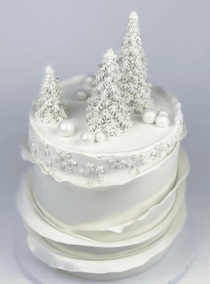 Bewitching Winter Cake