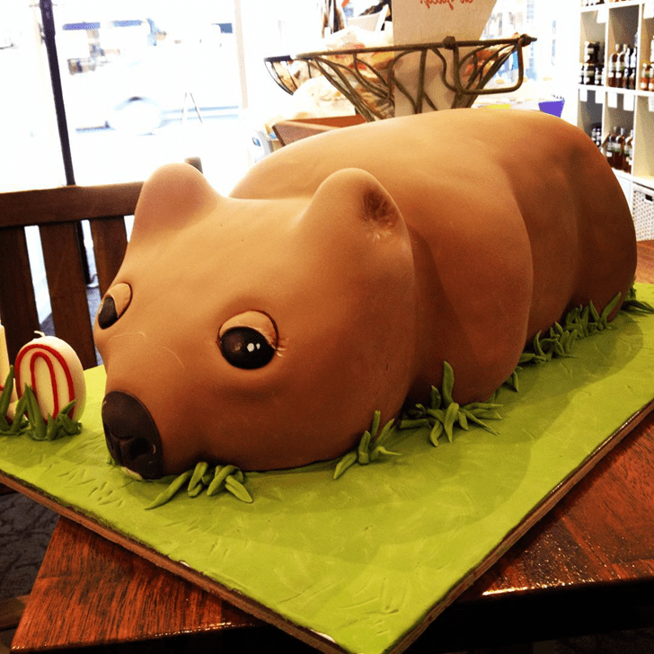 Adorable Wombat Cake