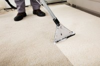 Best Carpet Care Systems: Sedalia, MO: Carpet & Upholstery