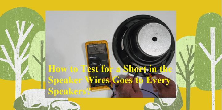 How-to-Test-for-a-Short-in-the-Speaker-Wires-Goes-to-Every-Speakers