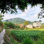 LengShuiTang photo by Barrie: BestChinaInfo