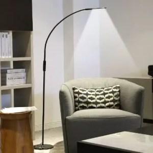 Best Gooseneck floor reading lamp