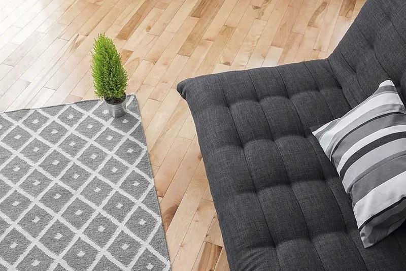 Non-Slip Area Rugs for Hardwood Floors