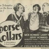 Funny movie quotes from Horses Collars