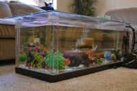 Aquarium Coffee Table DIY | Coffee Table Design Ideas