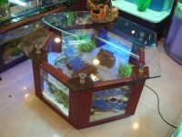 DIY Aquarium Coffee Table | Coffee Table Design Ideas