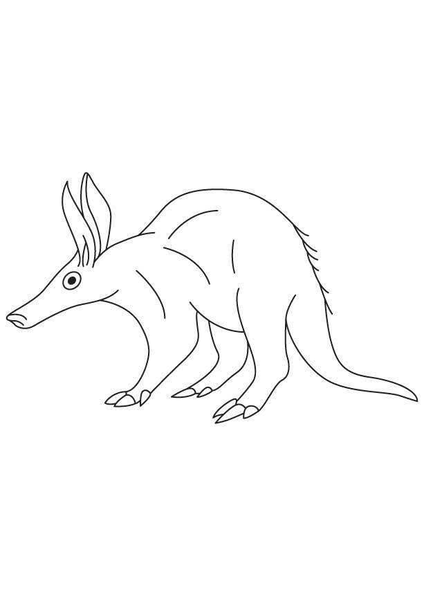 Aardvark Coloring Sheet Download Free Aardvark Coloring