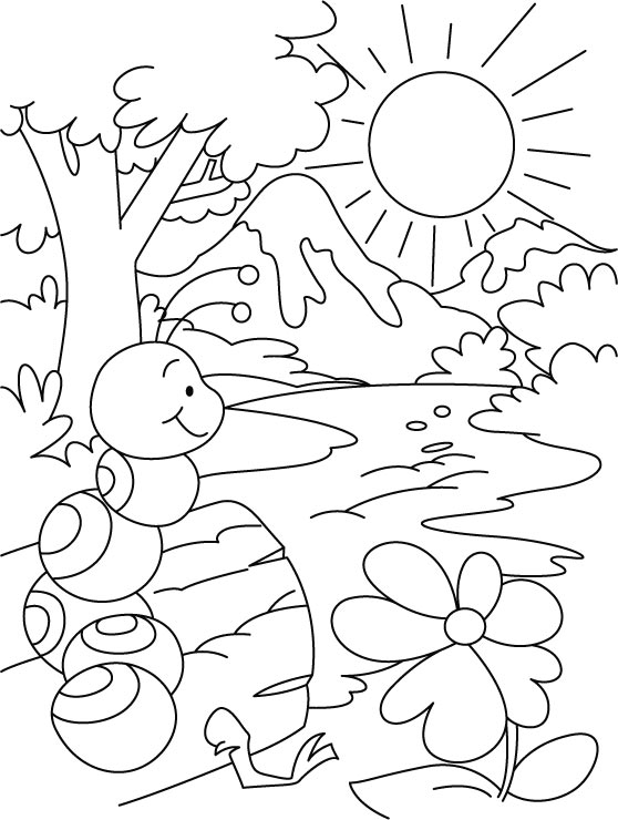 Hill or water, everywhere ant shelter coloring pages