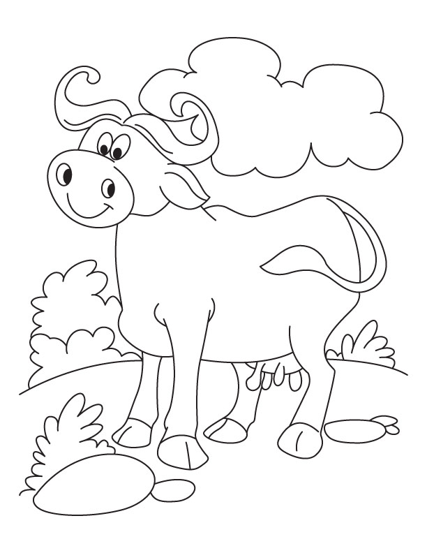 cool n relaxed buffalo coloring pages