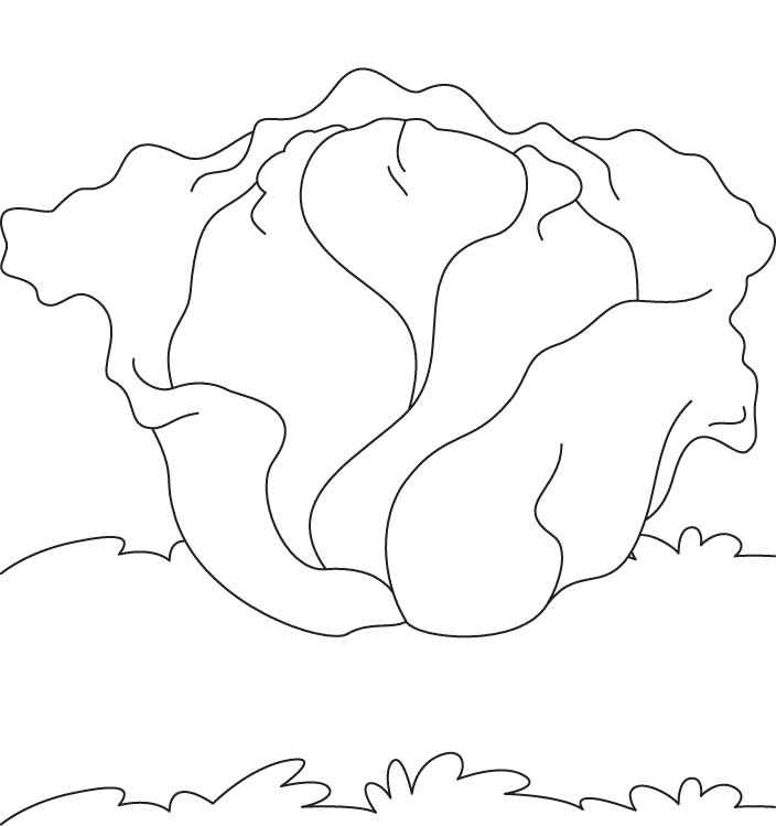 Kale Coloring Page Coloring Pages