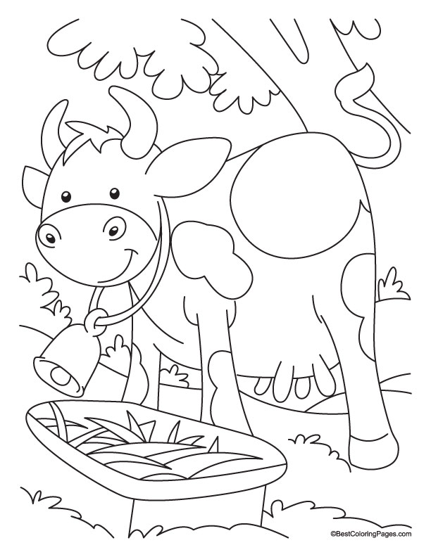 Pin Cows Coloring Pictures on Pinterest