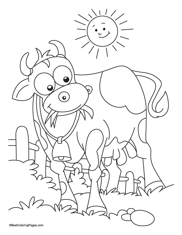 Chick Fil A Cow Coloring Pages
