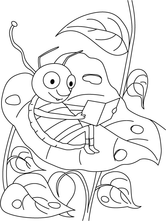 Grasshopper-carrying field research coloring pages