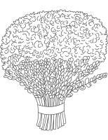 Lavender bouquet coloring page   Download Free Lavender ...