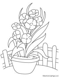 Long orchid flower vase coloring page | Download Free Long ...
