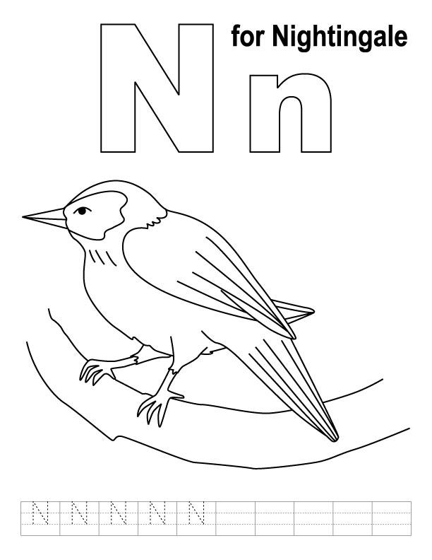 famous letter n worksheets