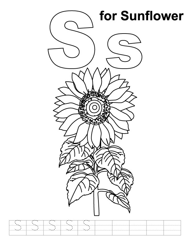 S for sunflower coloring page with handwriting practice