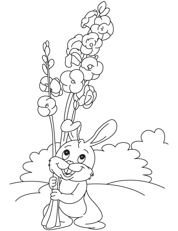 Basil Vase Plant Coloring Page