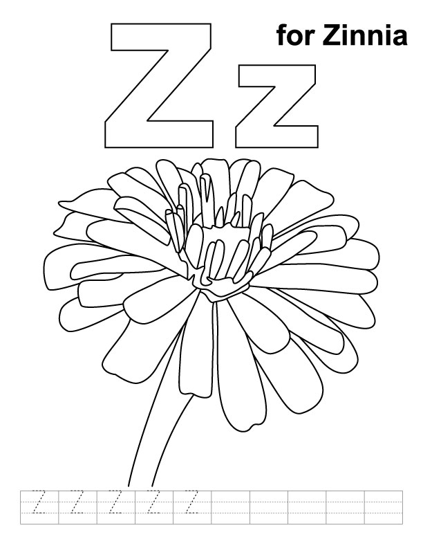 Z for zinnia coloring page with handwriting practice