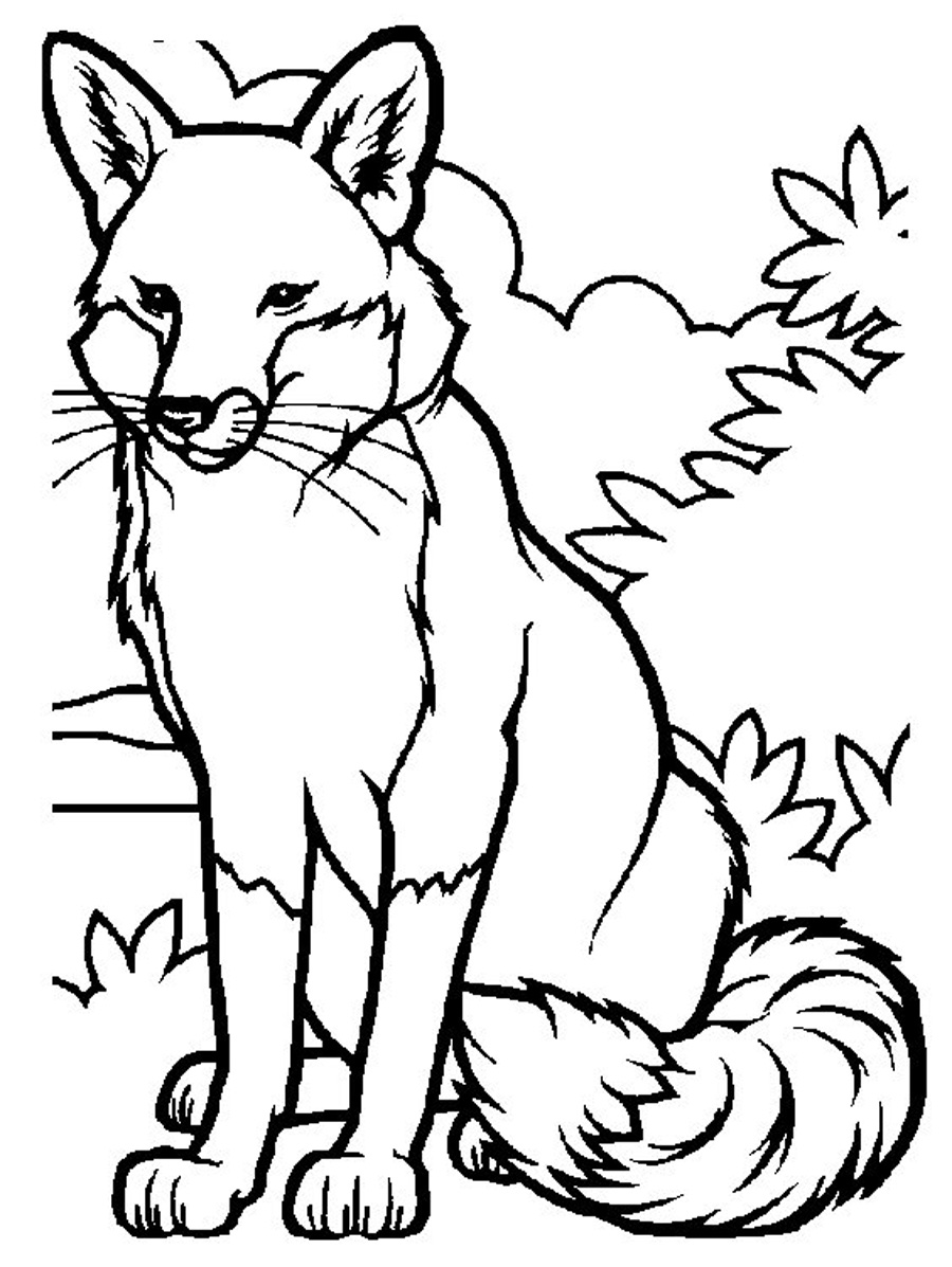 Fox Coloring Pages - Free Printable Coloring Pages for Kids