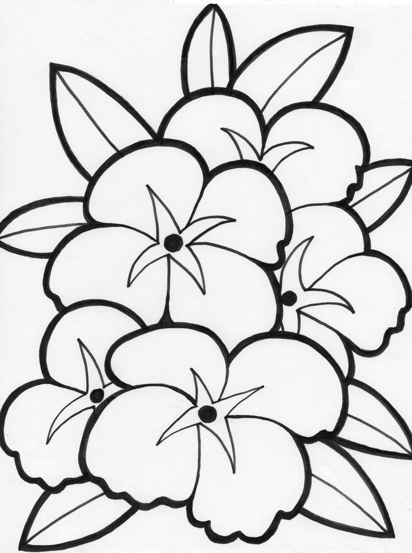 Cute Flowers Coloring Pages : flowers, coloring, pages, Printable, Flower, Coloring, Pages