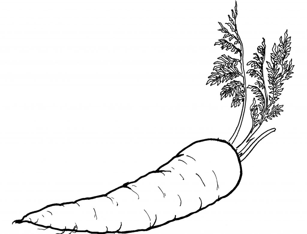 Vegetables Adult Coloring Page   Edible Paradise Strarberries ...