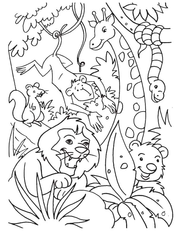 Safari Animal Coloring Pages : safari, animal, coloring, pages, Jungle, Coloring, Pages