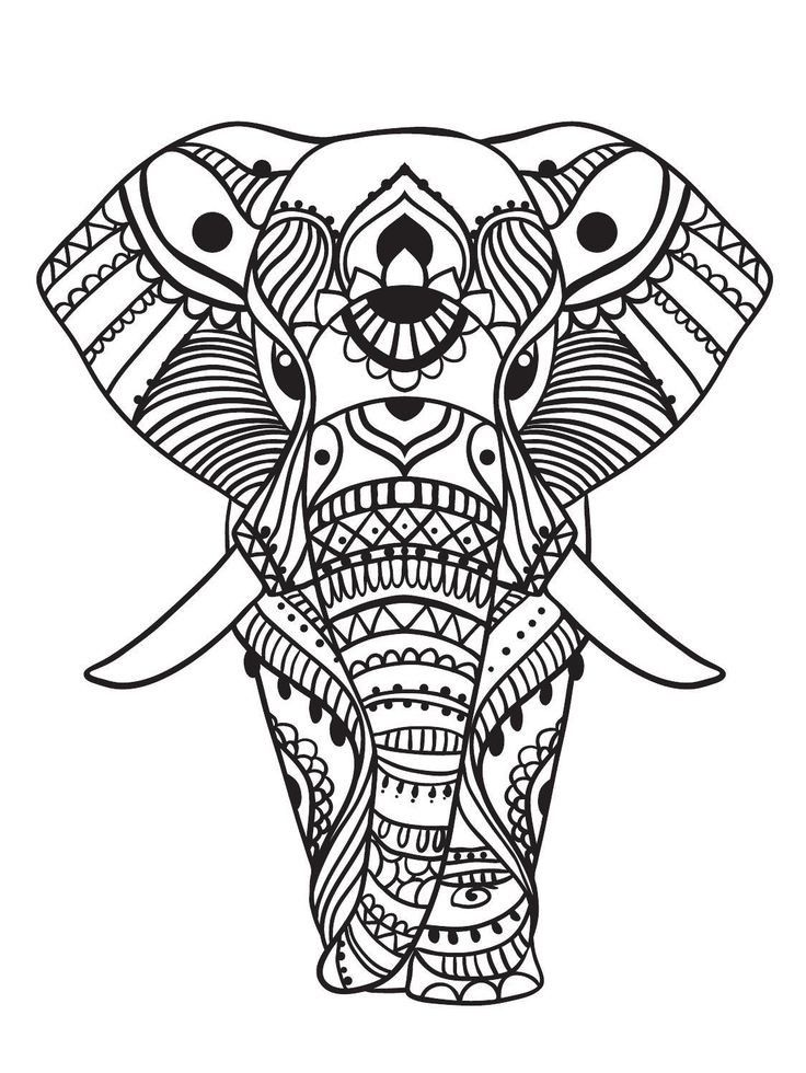 15 New Elephant Coloring Pages for Adults Image - Coloring